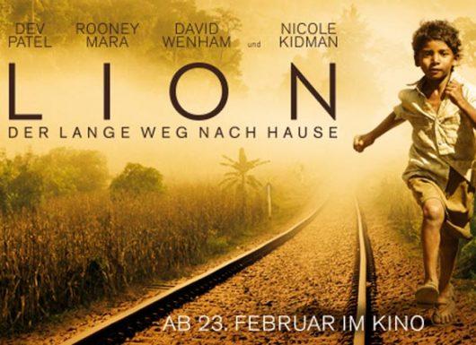 Lion_Pm